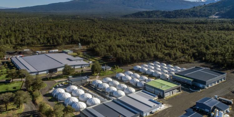 Centro de Recirculación Petrohué, empresa Camanchaca